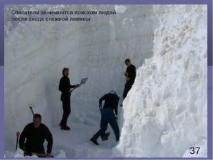 Спасатели занимаются поиском людей после схода снежной лавины *
