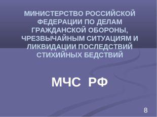 МИНИСТЕРСТВО РОССИЙСКОЙ ФЕДЕРАЦИИ ПО ДЕЛАМ ГРАЖДАНСКОЙ ОБОРОНЫ, ЧРЕЗВЫЧАЙНЫМ