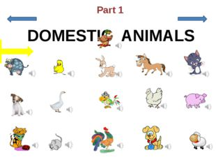 a puppy a cow a chicken a kitten a horse a puppy a parrot a hen a sheep a du