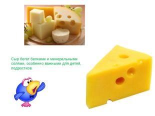 Сыр богат белками и минеральными солями, особенно важными для детей, подростк