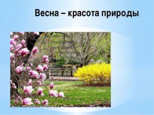Весна – красота природы