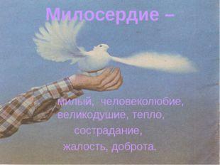 Милосердие – милый, человеколюбие, великодушие, тепло, сострадание, жалость,