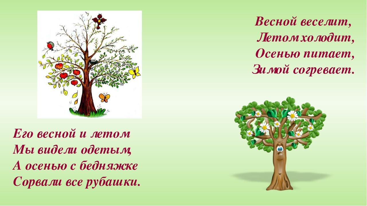 Весной веселит, Летом холодит, Осенью питает, Зимой согревает. Его весной и л...