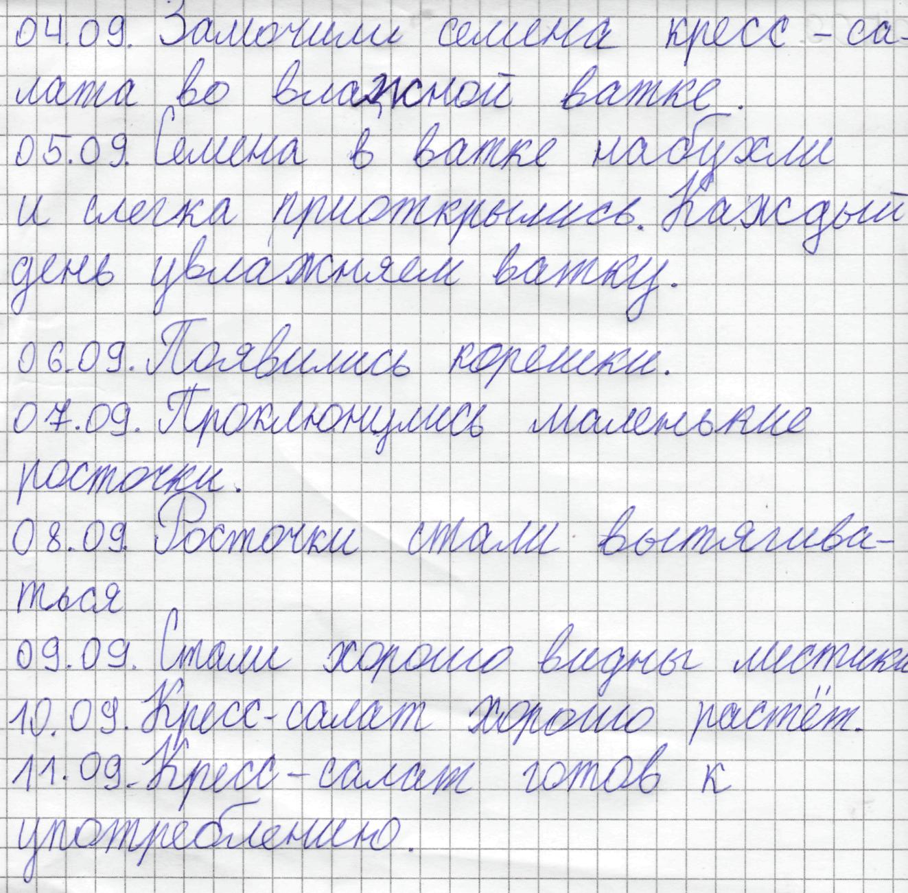 I:\кресс-салат\Ксюша\Ксюша.png