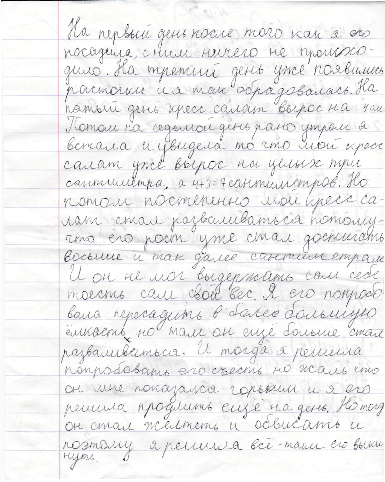 I:\кресс-салат\Софья Ломакина. Крест салат\Соня1.png