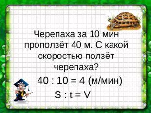 Черепаха за 10 мин проползёт 40 м. С какой скоростью ползёт черепаха? 40 : 10