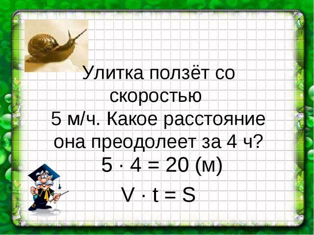 Улитка ползёт со скоростью 5 м/ч. Какое расстояние она преодолеет за 4 ч? 5 ∙...