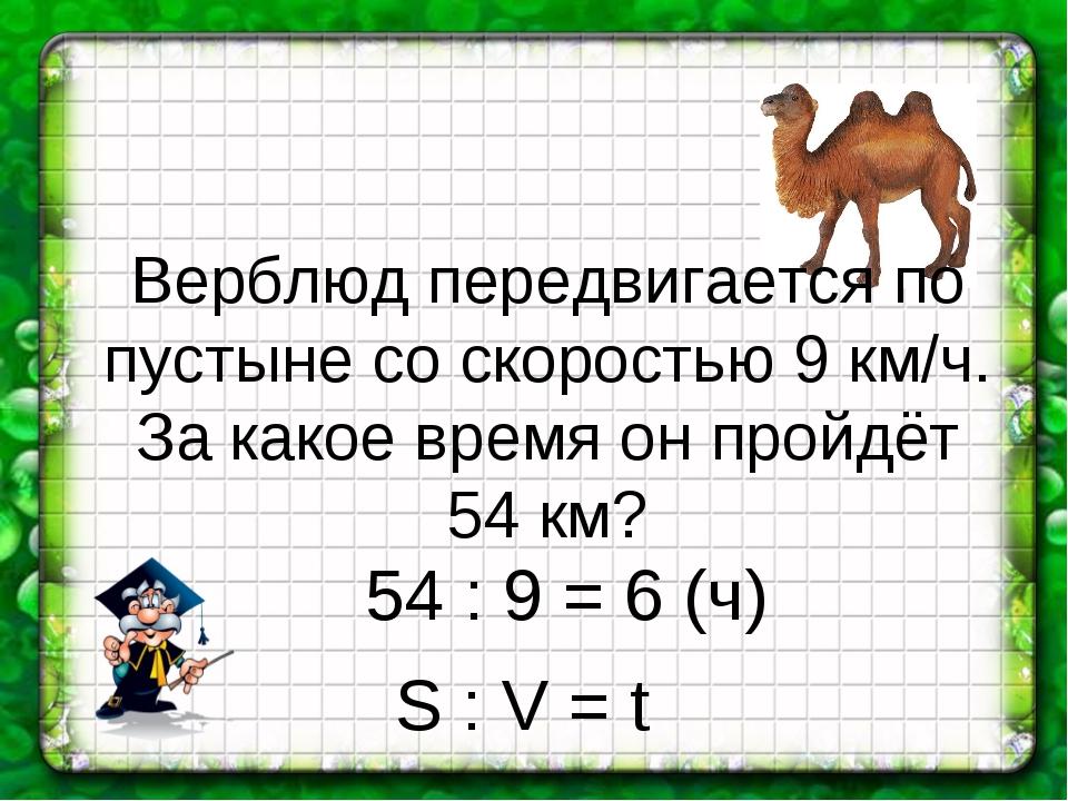 Верблюд передвигается по пустыне со скоростью 9 км/ч. За какое время он пройд...
