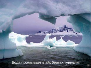 Вода промывает в айсбергах туннели.