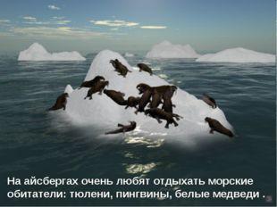 На айсбергах очень любят отдыхать морские обитатели: тюлени, пингвины, белые