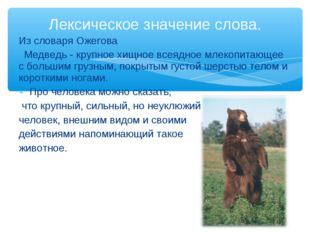 Из словаря Ожегова Медведь - крупное хищное всеядное млекопитающее с большим