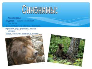 Синонимы: Медведь – мишка косолапый, топтыгин, Михаил Потапыч, увалень, нелов