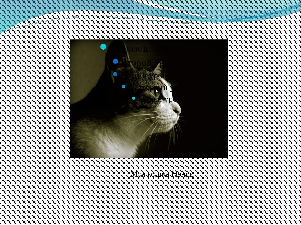 Моя кошка Нэнси