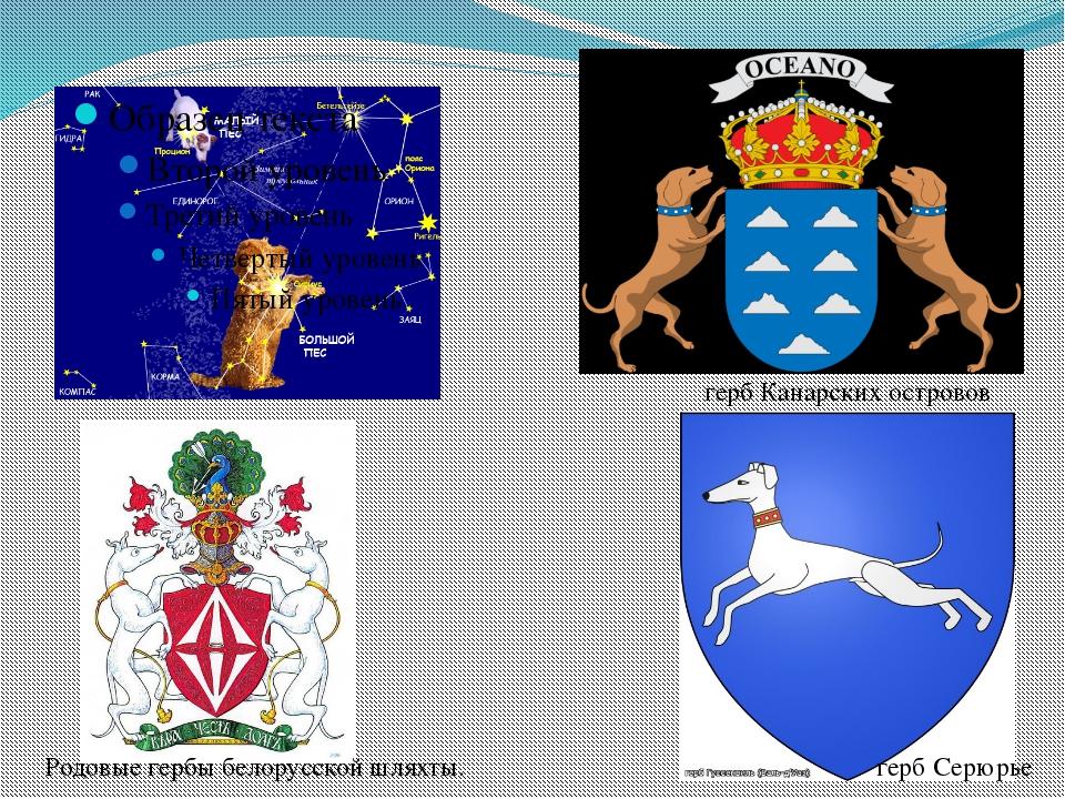 Родовые гербы белорусской шляхты. герб Серюрье герб Канарских островов
