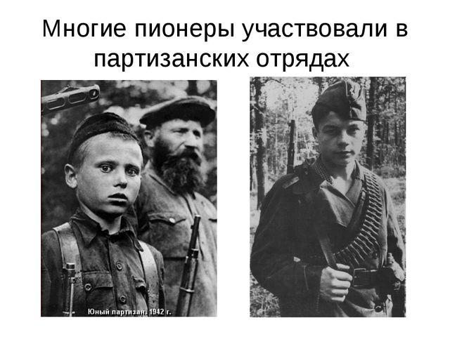 Многие пионеры участвовали в партизанских отрядах