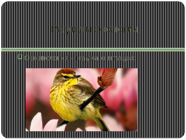 Разделы зоологии Орнитология – наука о птицах