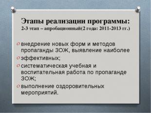 Этапы реализации программы: 2-3 этап – апробационный(2 года: 2011-2013 гг.) в