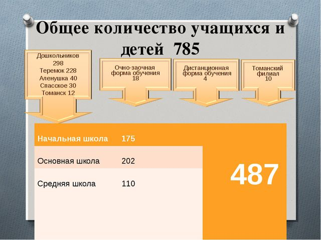 Общее количество учащихся и детей 785 Дошкольников 298 Теремок 228 Аленушка 4...