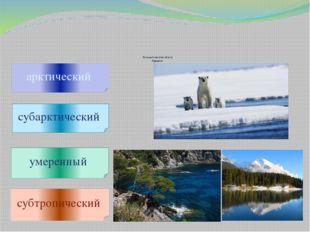 Климатические пояса Евразии арктический субарктический умеренный субтропичес