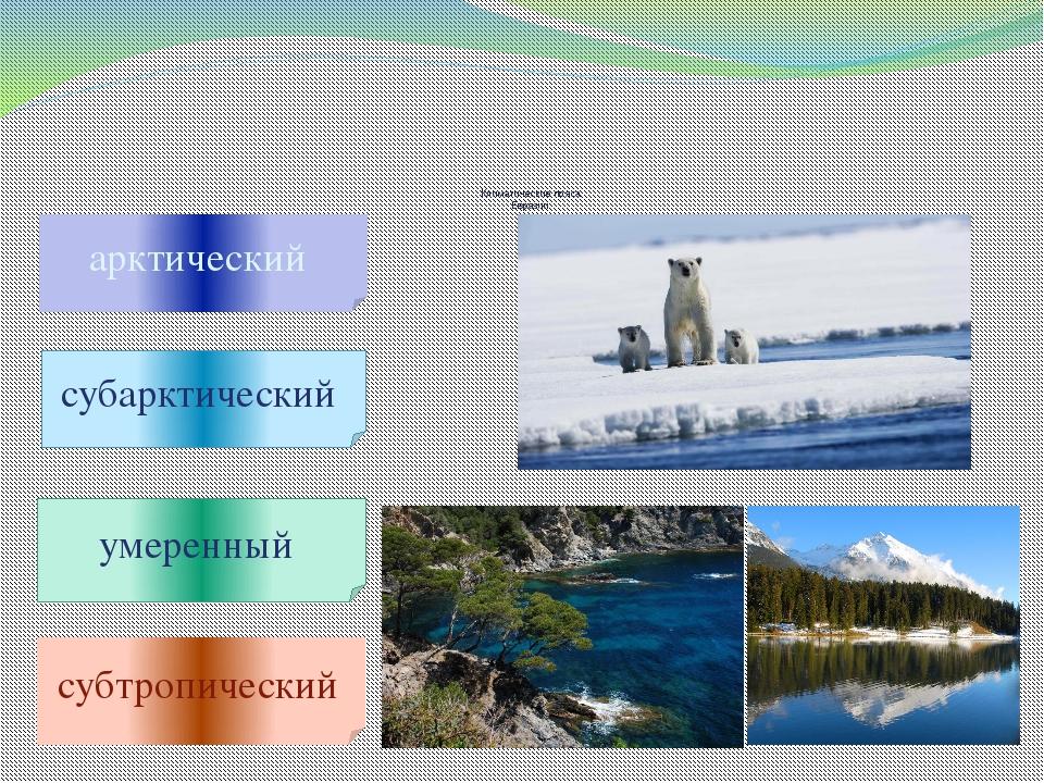 Климатические пояса Евразии арктический субарктический умеренный субтропичес...
