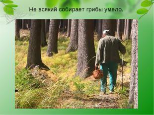 Не всякий собирает грибы умело.