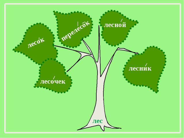 лес лесной лесочек лесник перелесок