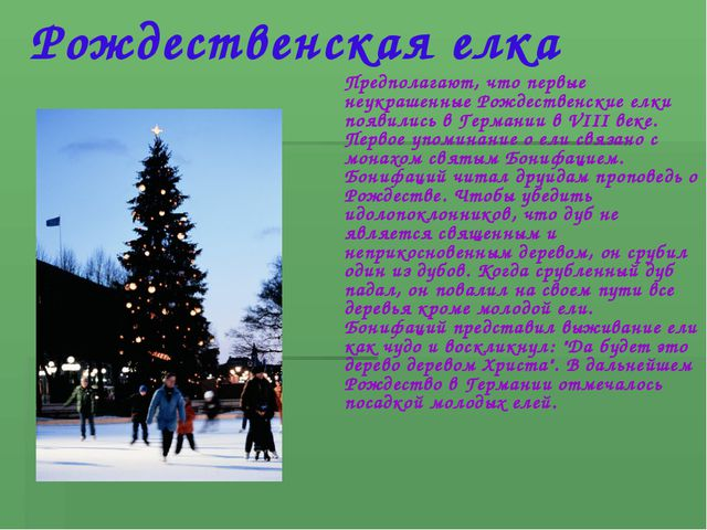Рождественская елка Предполагают, что первые неукрашенные Рождественские елки...