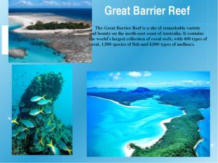 Great Barrier Reef The Great Barrier Reef is a site of remarkable variety and