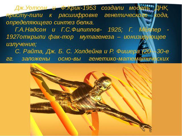 Дж.Уотсон и Ф.Крик-1953 создали модель ДНК, присту-пили к расшифровке генетич...