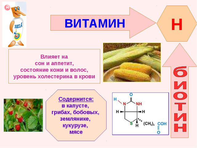 ВИТАМИН H Влияет на сон и аппетит, состояние кожи и волос, уровень холестерин...