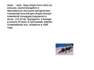 Шорт - трек - вид скоростного бега на коньках, заключающийся в максимально б