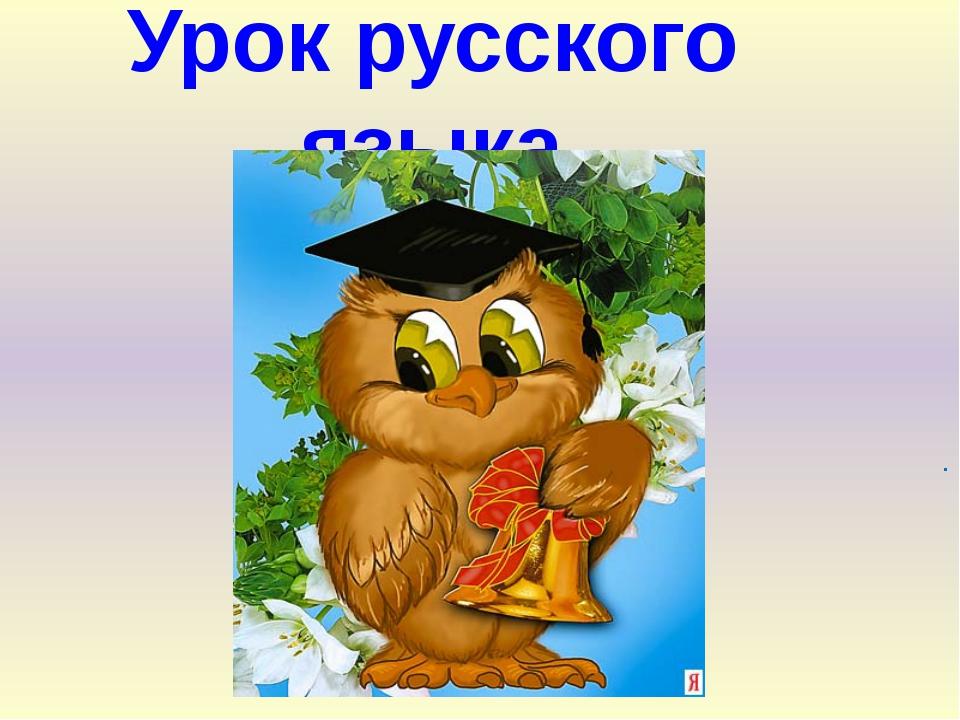 Урок русского языка .