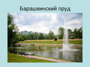 Барашкинский пруд