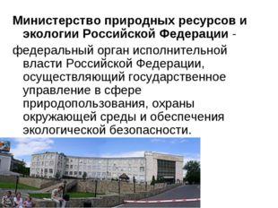 Министерство природных ресурсов и экологии Российской Федерации- федеральный