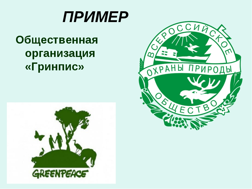 ПРИМЕР Общественная организация «Гринпис»
