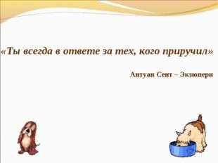 «Ты всегда в ответе за тех, кого приручил» Антуан Сент – Экзюпери