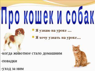 Я узнаю на уроке … Я хочу узнать на уроке… -когда животное стало домашним -по