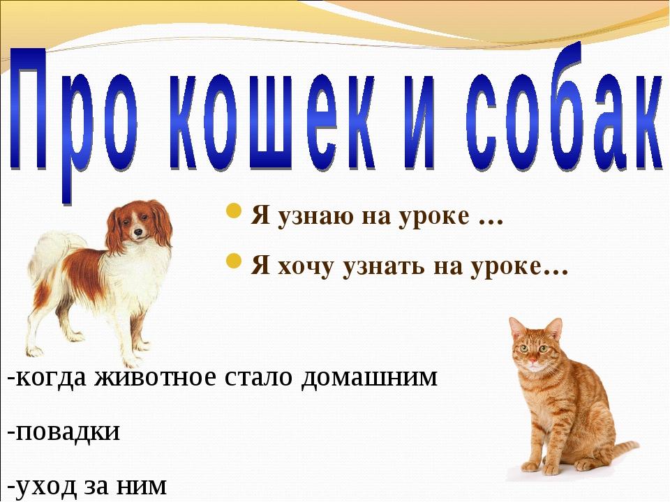 Я узнаю на уроке … Я хочу узнать на уроке… -когда животное стало домашним -по...
