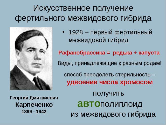 Георгий Дмитриевич Карпеченко 1899 - 1942 1928 – первый фертильный межвидовой...