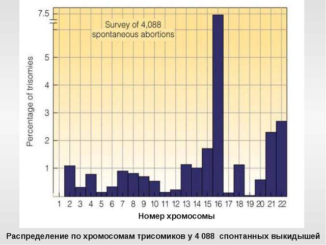 Распределение по хромосомам трисомиков у 4 088 спонтанных выкидышей