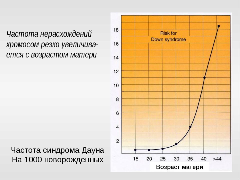 Частота нерасхождений хромосом резко увеличива-ется с возрастом матери Возрас...