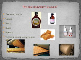 Что ещё получают из льна? Льняное масло Спирт Воск Клей Бумагу Термо и звуко