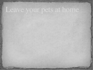Leave your pets at home