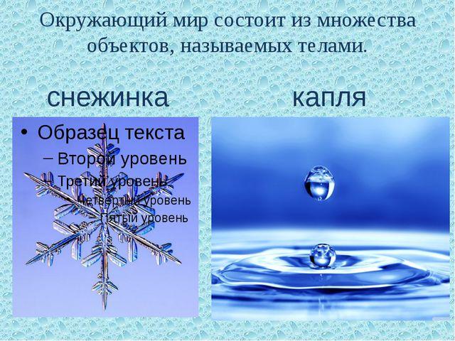 Окружающий мир состоит из множества объектов, называемых телами. снежинка капля