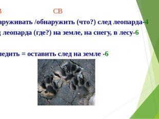 НСВ СВ обнаруживать /обнаружить (что?) след леопарда-4 след леопарда (где?) н