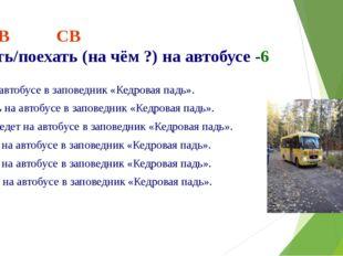 НСВ СВ ехать/поехать (на чём ?) на автобусе -6 Я еду на автобусе в заповедник