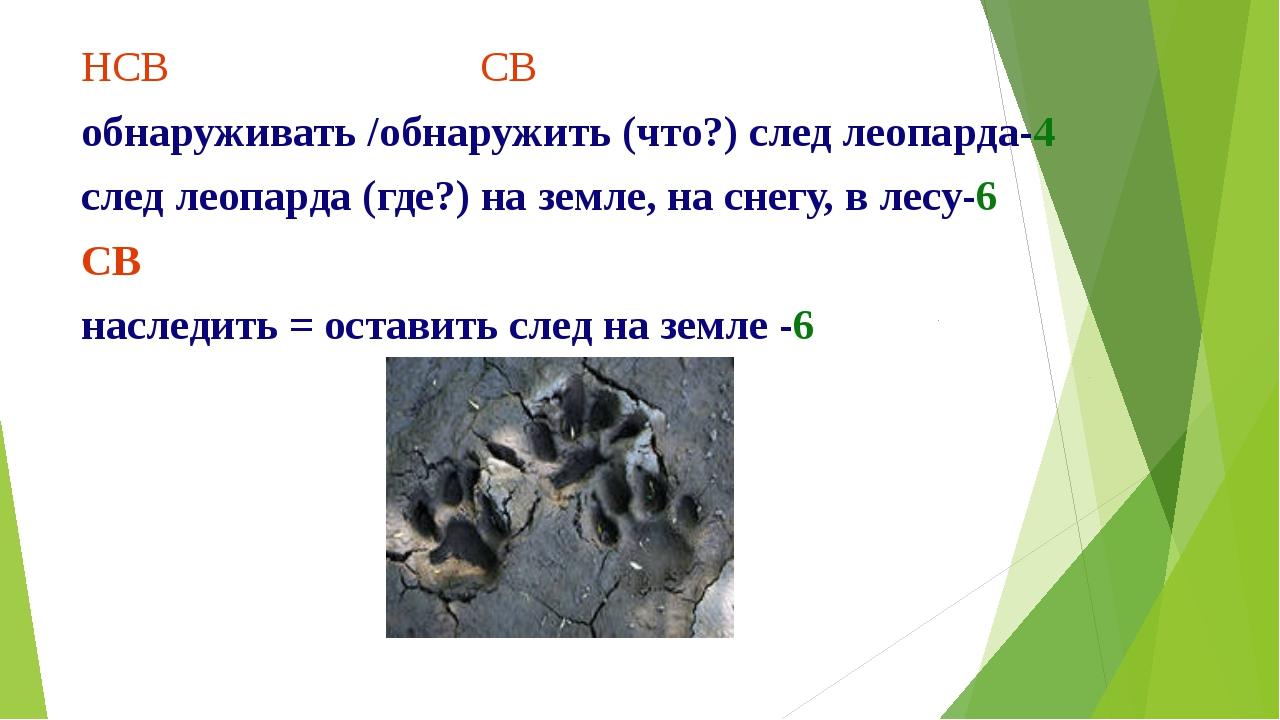 НСВ СВ обнаруживать /обнаружить (что?) след леопарда-4 след леопарда (где?) н...