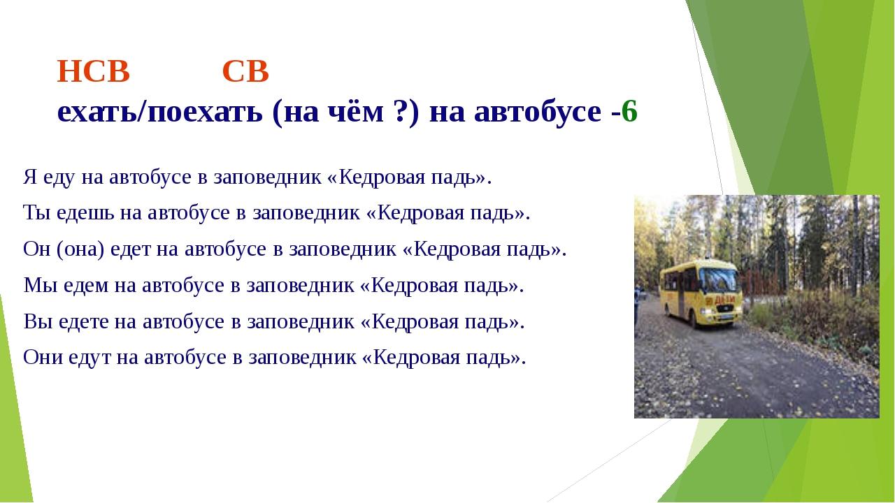 НСВ СВ ехать/поехать (на чём ?) на автобусе -6 Я еду на автобусе в заповедник...
