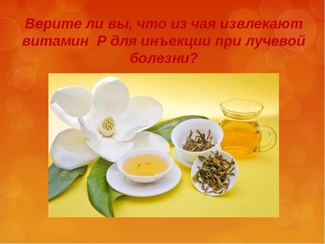 Верите ли вы, что из чая извлекают витамин Р для инъекции при лучевой болезни?