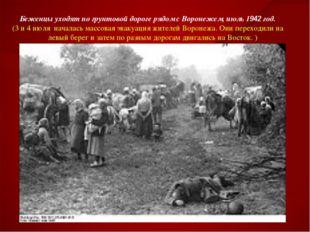 Беженцы уходят по грунтовой дороге рядом с Воронежем, июль 1942 год. (3 и 4 и